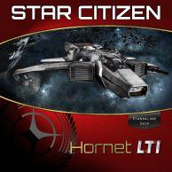 Anvil Hornet LTI (CCU'ed)