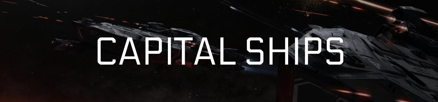 Capital Warships Banner