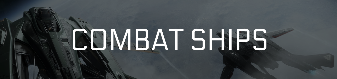 Combat Ships Banner